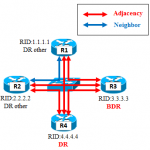 【図解/OSPF】アジャセンシー(隣接関係)確立
