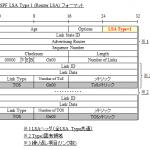 【図解/OSPF】LSA Type1 (Router LSA) のフォーマットと詳細