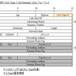 【図解/OSPF】LSA Type5 (AS External LSA)のフォーマットと詳細